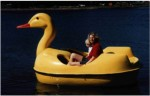 Duck Pedal Boat