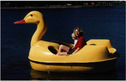 Duck Boats For Sale >> Duck Pedal Boat