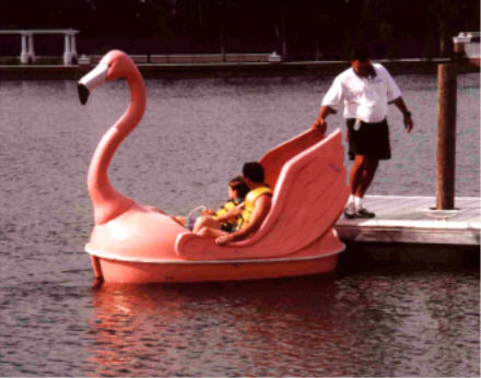 Pink Flamingo W Wings Pedal Boat