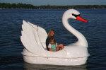 Swan w/Wings Peadl Boat